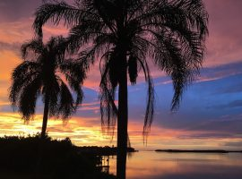 Free things to do in Clearwater, Florida