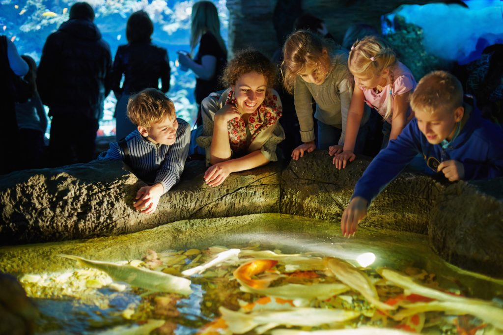 Young woman and several children see after fishes in touch pool at an aquarium